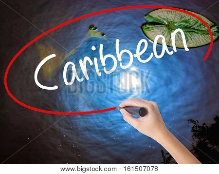 Woman Hand Writing Caribbean With Marker Over Transparent Board