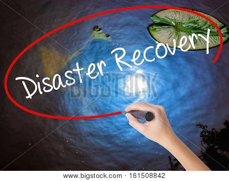 Woman Hand Writing Disaster Recovery With Marker Over Transparent Board