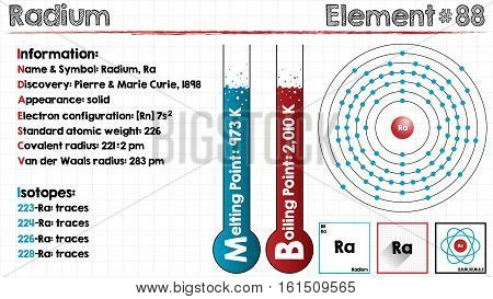 Large and detailed infographic of the element of Radium
