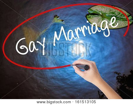 Woman Hand Writing Gay Marriage With Marker Over Transparent Board.