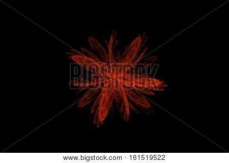Red fractal abstract flower on black background