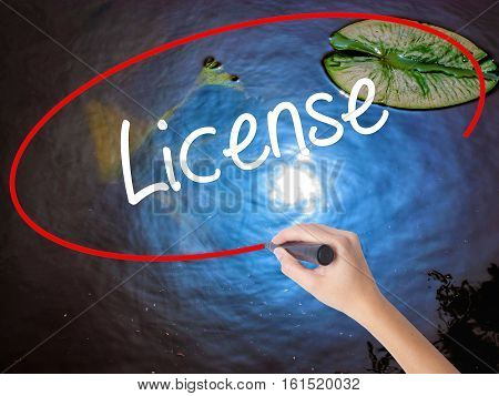 Woman Hand Writing License With Marker Over Transparent Board