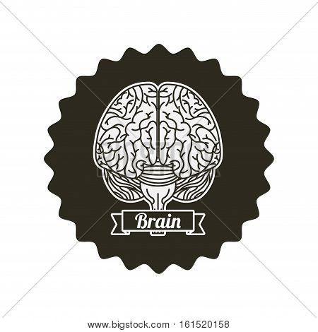 seal stamp with human brain organ icon over background. vector illustraiton