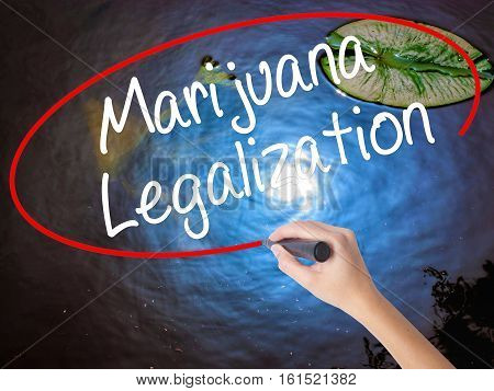 Woman Hand Writing Marijuana Legalization With Marker Over Transparent Board