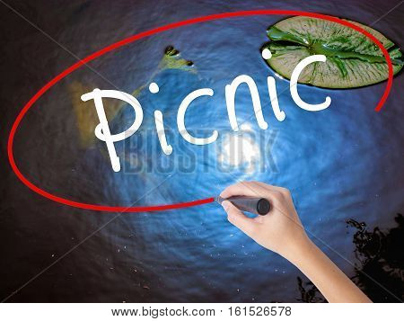 Woman Hand Writing Picnic With Marker Over Transparent Board