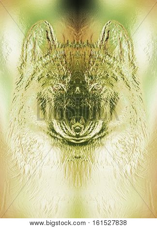 mystical smiling jackal appearence, computer metal effect graphic collage