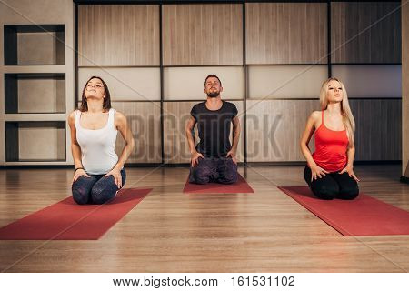 yoga, fitness, sport, and healthy lifestyle concept - group of people making yoga exersice