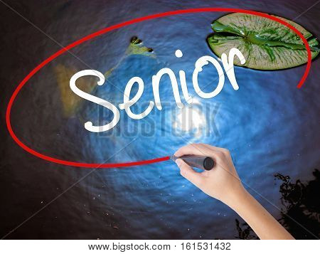 Woman Hand Writing Senior With Marker Over Transparent Board