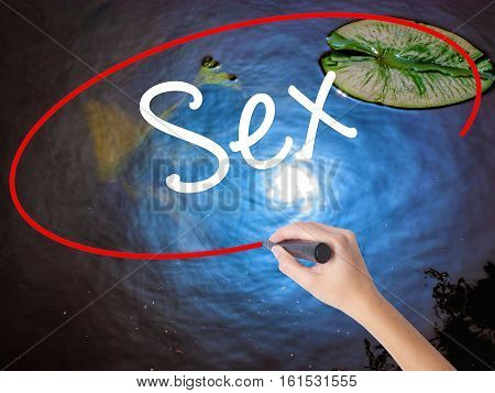 Woman Hand Writing Sex With Marker Over Transparent Board