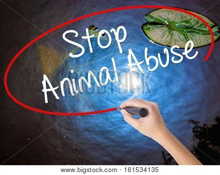 Woman Hand Writing Stop Animal Abuse With Marker Over Transparent Board