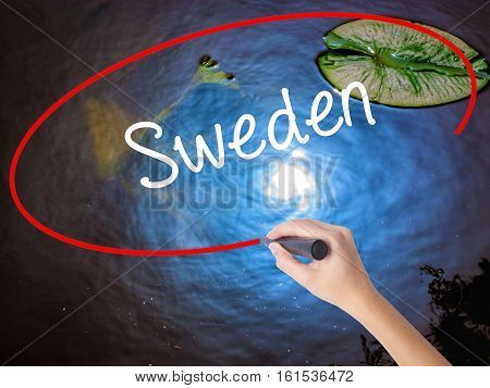 Woman Hand Writing Sweden  With Marker Over Transparent Board