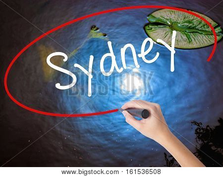 Woman Hand Writing Sydney  With Marker Over Transparent Board