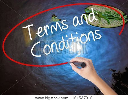 Woman Hand Writing Terms And Conditions With Marker Over Transparent Board