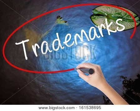 Woman Hand Writing Trademarks  With Marker Over Transparent Board