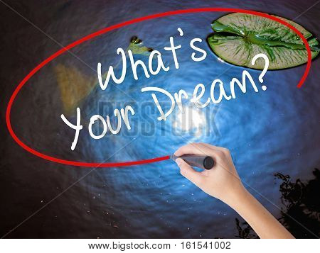 Woman Hand Writing What's Your Dream? With Marker Over Transparent Board
