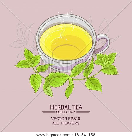 cup or peppermint tea on color background
