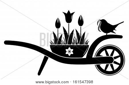 vector wheel barrow and tulips in pot and bird with worm isolated on white background
