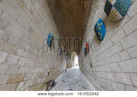 Amboise, France - June 2016: Entrance passage to Amboise castle