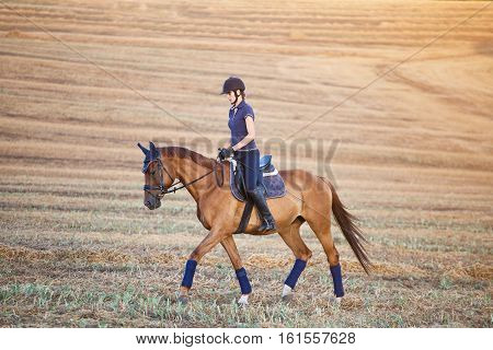Portrait of equine sportswoman jumping on a horse in field