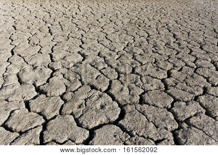 Cracked Soil Surface Of Dried Lake