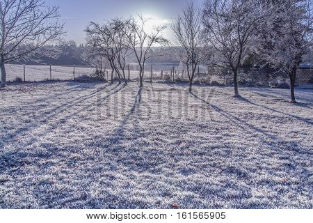 Morning frost landscape in In defuse sunlight Nature Winter