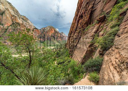 Beautiful Zion Canyon View