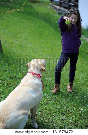 Cute Young Girl Plays With A Ball And Her Labrador Dog
