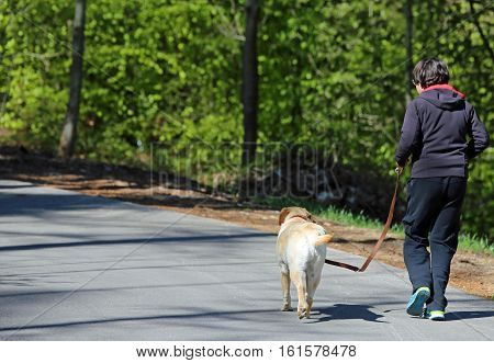 young boy running down the road with his dog Labrador Retriever