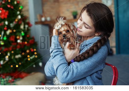 little girl in a blue sweater hugging a dog. The concept of Christmas.