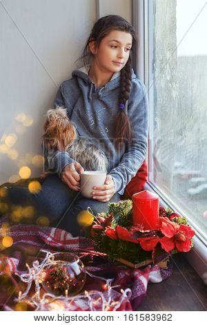 The girl sits on a windowsill with a dog a cup of tea. The concept of Christmas.The girl sits on a windowsill with a dog a cup of tea. The concept of Christmas.