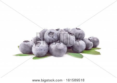 Fresh whortleberry isolated on a white background cutout