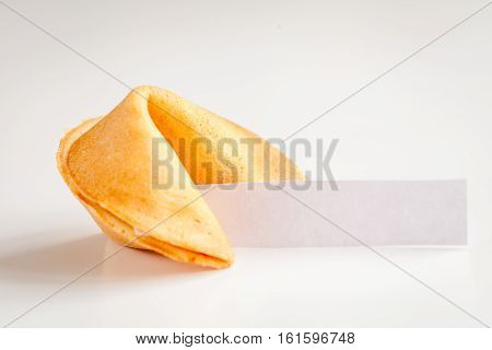 Chinese fortune cookie with prediction on white background close up