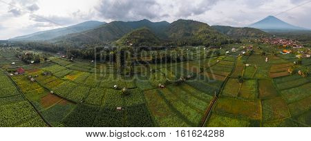 Aerial panorama of the rice fields near the village of Amed, Bali, Indonesia