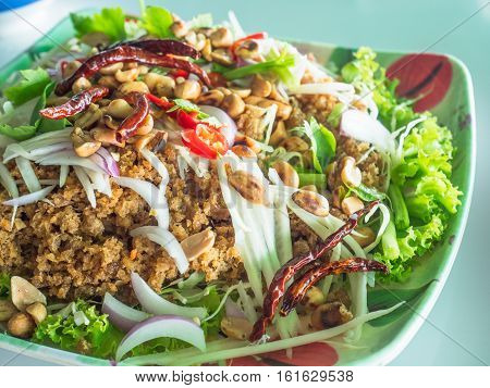 Yam pla duk foo a classic Thai meal consisting of minced and fried catfish shredded green papaya fresh and dried chili pepper dry roasted peanuts raw onion salad and a dressing made from lime juice and garlic. Shallow depth of field.