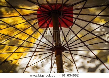 Tree shadow and background of under umbrella.