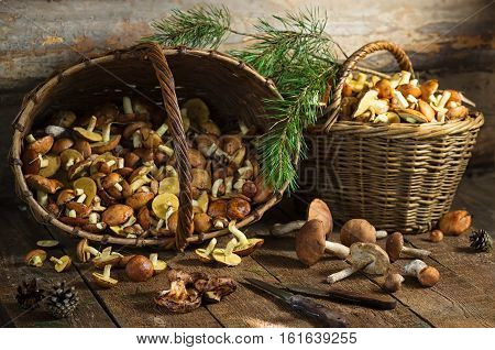 Two baskets with mushrooms on a wooden surfacets with mushrooms on a wooden surface