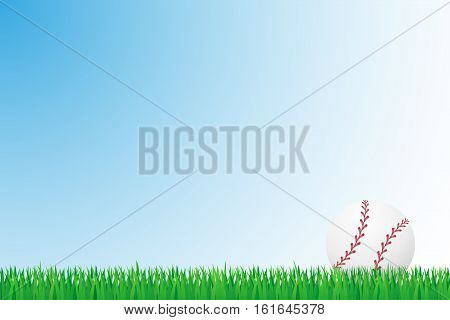 baseball grass field vector illustration isolated on background