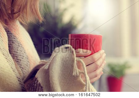 red mug with a warming drink in the hands of a blanket wrapped up against the window and tree / cozy domestic surroundings