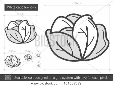 White cabbage vector line icon isolated on white background. White cabbage line icon for infographic, website or app. Scalable icon designed on a grid system.