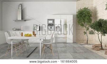 Minimalistic white kitchen with inner garden minimal interior design, 3d illustration