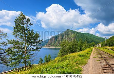 Circum-baikal Railway, Poplars On Shore Baikal