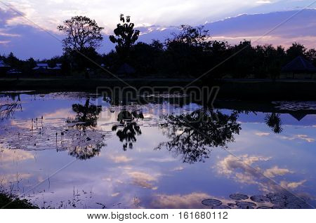 Scenery of Countryside Twilight Sunset Purple Color