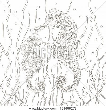 Anti-Stress coloring page for adults and older children. Seahorses and seaweed on the white background. Vector illustration