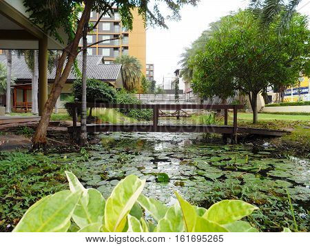 Wooden bridge in park, Small pond and decorative old wooden bridge in park