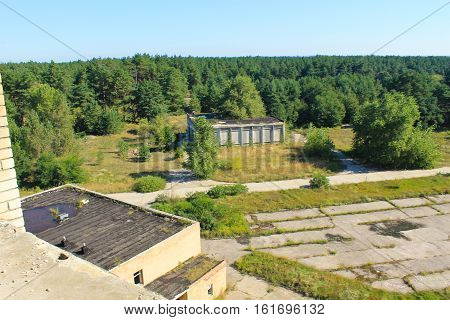 Aerial view on the pine forest on summer