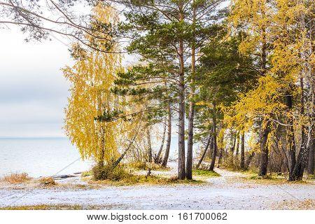 Autumn landscape with first snow. The river Ob Novosibirsk oblast Siberia Russia