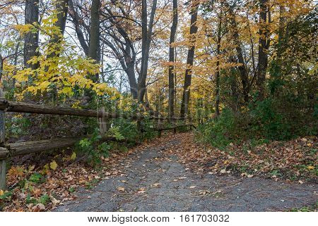 The footpath with a log fence disappearing into the depths of an autumn park, Lake Park, Milwaukee, Wiskonsin, USA
