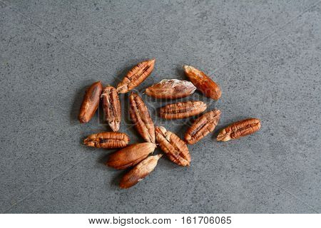 Seeds Of Date Palm