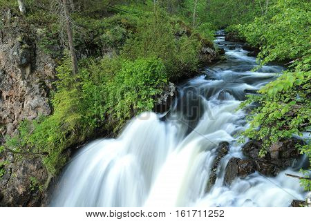 Russia ,Karelia ,the national forest Park rapid river.