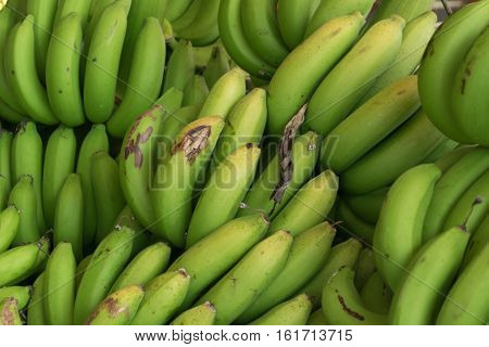 Heap of green banana in the market